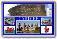 FRIDGE MAGNET - CARDIFF - Large - Wales TOURIST