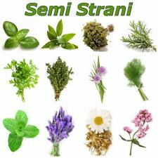 AROMATIC HERBS 240 Seeds in 12 Variety Coll. 1: BASIL, SAGE, OREGANO, MINT etc