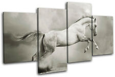 Stallion Equestrian horse Animals MULTI TOILE murale ART Photo Print