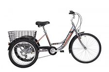 Bicicletta Cargo Acquisti Online Su Ebay