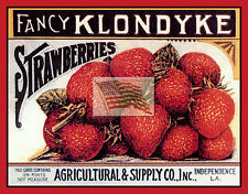 REPRINT PICTURE older fruit crate label KLONDYKE STRAWBERRIES la 7x5 1/2