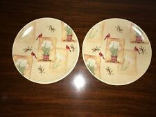"Sonoma Winter Fields Salad Plate White Flowers With Cardinals 8"" Set of 2 NEW"