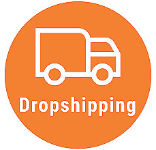 Dropshipping: Create Dropship Business Fast Video Tutorial