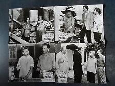 ALLE SEHNSUCHT DIESER WELT - Judy Holliday, Richard Conte - 7 Aushangfotos 1956