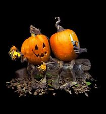 Pumpkin Decorating Kit Vine Legs Outdoor Halloween Decorations