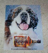1982 ad page - Chivas Regal Scotch Whisky cute st saint bernard dog Print Advert
