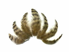 10 Pieces - Tan Dyed Grizzly Hen Saddle Feather