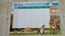 Mädchen Din  A4  ✿ Schule Einschulung Neu ✿ Pony NAME Pferde STUNDENPLAN  f