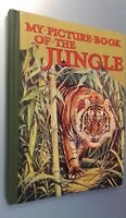 My Picture Book Of The Jungle Demuestra Ward Lock&co London No Fecha ABE