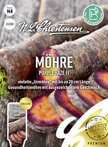 Möhren 'Purple Haze' F1  schwarze Urmöhre bis zu 20 cm lang Samen 01080