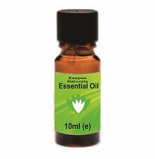 Citronella Essential Oil 2 x 10ml  100% Pure - For Aromatherapy & Home Fragrance