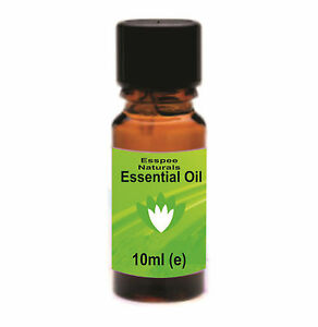 Rosemary Essential Oil 10ml - 100% Pure - For Aromatherapy & Home Fragrance