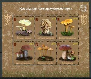 Kazakhstan Mushrooms Stamps 2019 MNH Fungi Nature 6v M/S