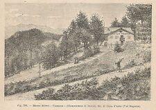 A1510 Canzana - Pensione Trieste - Xilografia - Stampa Antica 1895 - Engraving