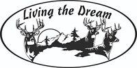MOTORHOME CAMPER VAN CARAVAN / STICKERS /DECAL / GRAPHIC / LIVING THE DREAM STAG