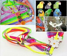 Beauty Parrot Adjustable Bird Harness and Leash Anti-bite for Bird Parrot Africa