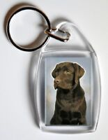 Labrador (Chocolate) Key Ring By Starprint - No 4