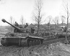 "German VI Tiger Tanks in Ukraine 8""x 10"" World War II WW2 Photo 348"