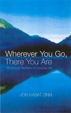 Wherever You Go, There You Are: Mindfulness meditation for everyday life by Jon Kabat-Zinn (Paperback, 2004)