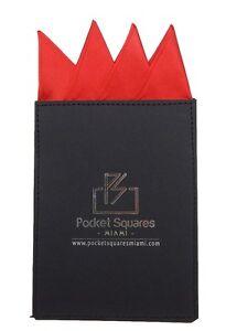 Pocket Square..Satin Conquistador