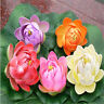 5 Pcs Artificial Lotus Water Lily Floating Flower EVA Pool Plant Floral Decor