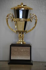 "11"" Gold & Silver Plastic Cup Trophy Award Wood Base-Free Engraving and shipping"