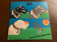 STRAY DOG WHILE YOU'RE DOWN THERE VINYL LP MANTICORE VG+ COVER VG