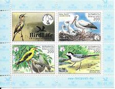 BELARUS 2002   BIRDS Mini Sheet  MINT NH