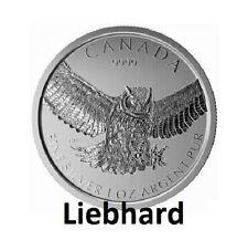 5$ Silber Kanada Birds of Prey Horned Owl / Raubvögel-Serie Eule 1 OZ 2015