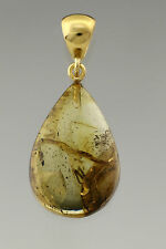 Fossil SPIDER Inclusion Genuine BALTIC AMBER Gold Plated Pendant 3.4g p161024-3
