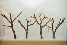 Manzanita Bird Perches Set of 4 w/ hardware Multibranch * Very Peely Bark :)