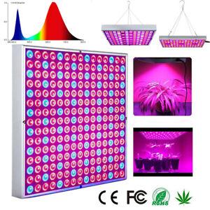 LED Horticole Lampe de Culture Croissance Lampe de Plante Légume Fleur Intérieur