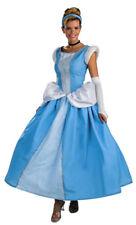 Disney Adult Cinderella Prestige Halloween Costume 12-14