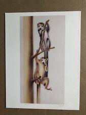 "SIBYLLE ERNI - UNITED NATIONS (WFUNA) ART GRAPHIC - 1995 - ""ENDANGERED SPECIES """