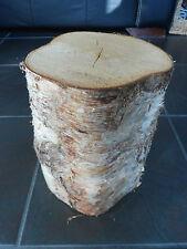 """Silver Birch Bark legno Log decorativi visualizzazione log caratteristica principale .12 """"Tall. 6-7"""" Dia"""