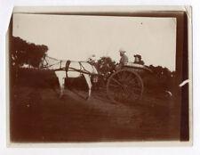 PHOTO ANCIENNE Voiture à cheval Attelage Promenade 1900 Carriole Couple Blanc