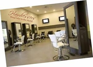 Hairdressers bring color to the world salon decals wall words sayings hair vinyl