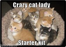 Funny The Crazy Cat Lady Starter Kit Refrigerator Magnet