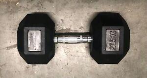 HEX Dumbbells 27.5kg Rubber Encased Cast Iron Gym Pair