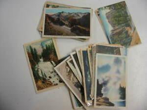 100 Older National Park Postcard Lot