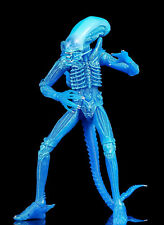 NECA ALIEN - Blu Big Chap Alien Warrior - Personaggio - NUOVO / conf. orig.