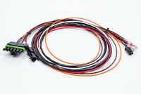 MSD IGNITION CONTROL BOX MODULE Ignition Wiring Harness 6430/6401 MSDASY17296