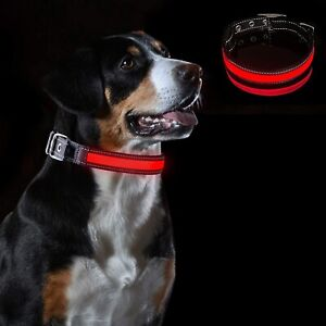 Large Red LED Reflective Safety XL Dog Pet Collar 3 Bright Modes 10 Light Hours