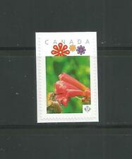 PICTURE POSTAGE  P  Flowers frame   # 2592a  PERSONALIZED     MNH  # 2