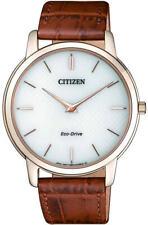 Citizen AR1133-15A Eco-Drive Analog Men's Watch