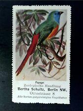 Cinderella Poster Stamp Reklamemarke - Spermestes prasina Bird - 18720