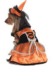 Orange Black Pumpkin Witch Pet Dog Cat Halloween Costume-Xl