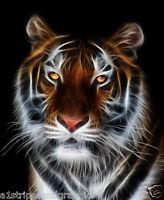 SUNBEAM TIGER WALL ABSTRACT  ART GRAPHIC VINYL STICKER