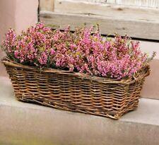 Pflanzkorb Naturweide zum Bepflanzen Henkel Sommer Garten Terrasse Braun 53 cm