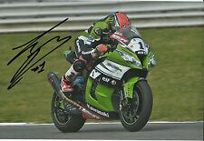 Tom Sykes mano firmado Kawasaki Racing 2014 12x8 Foto 2.